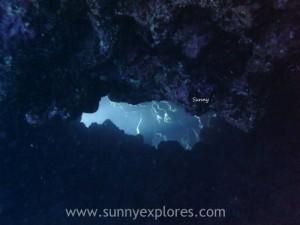 Diving in Dahab 20