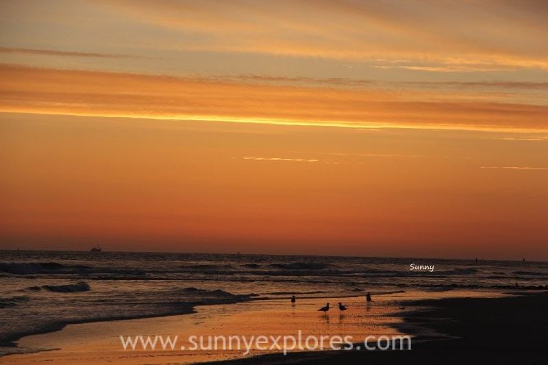Sunnyexplores Vlieland 1 (1)kopie