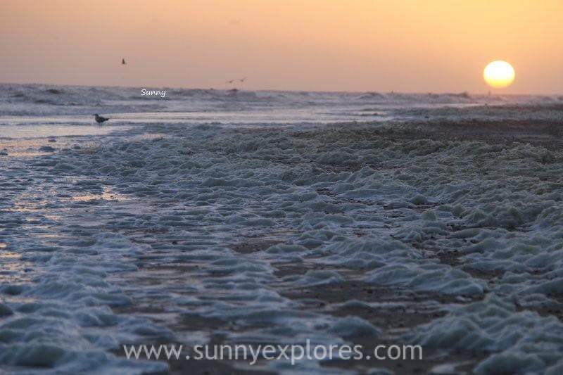 Sunnyexplores Vlieland 1 (9)kopie