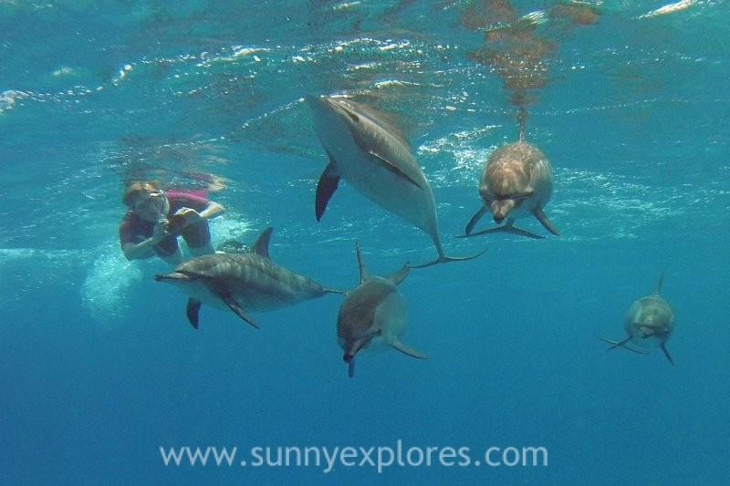 Sunny explores travels (3)
