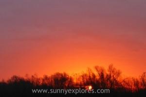 Sunnyexplores 2015-2