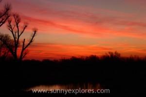 Sunnyexplores 2015-3