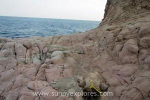Sunnyexplores Galum 4