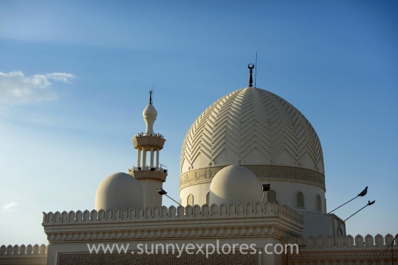 Sunnyexplores guides 1