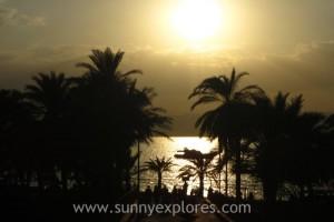 Sunnyexplores guides 4