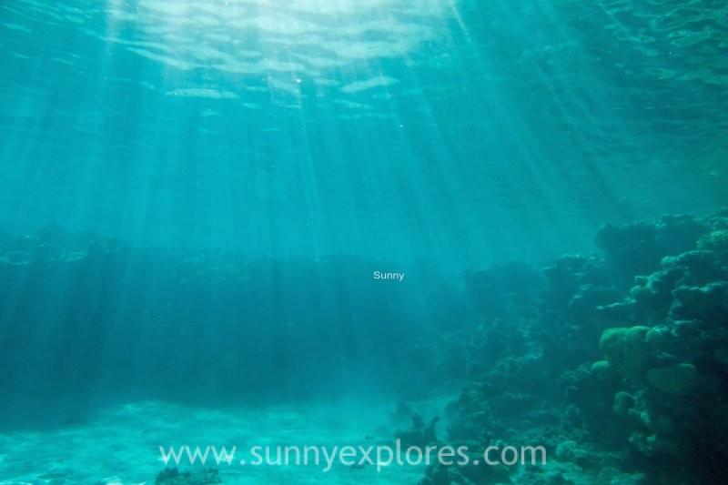 Sunnyexplores Dahab 2016-14