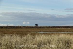 Sunnyexplores Ameland 7