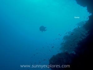Sunnyexplores Mohamed (6)