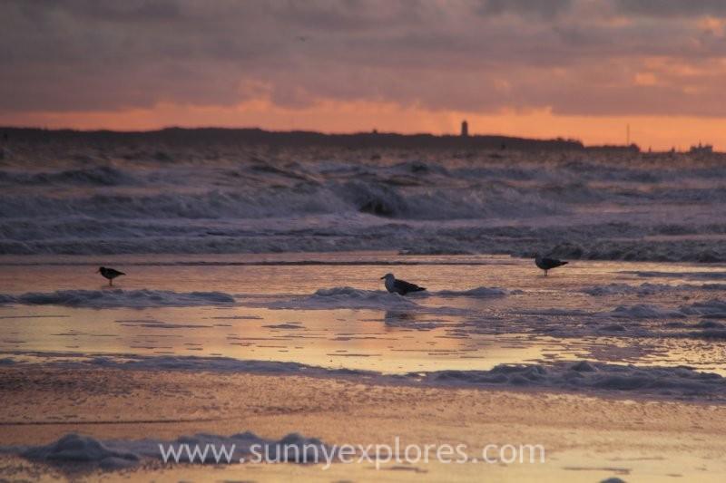 Sunnyexplores Vlie sunrise (9)