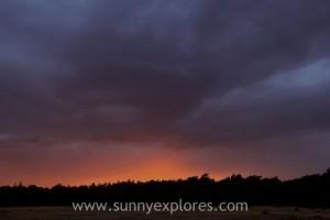 Sunnyexplores Veluwe 11