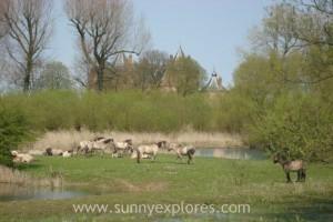 Sunnyexplores Munnikenland 2
