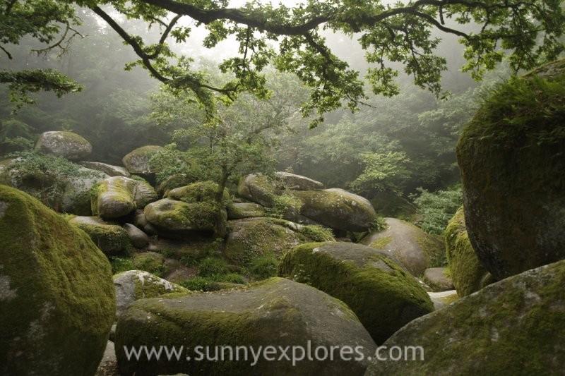 4-sunnyexplores-brittany