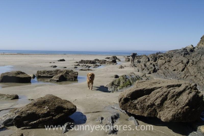 Sunnyexplores Best Beaches Bretagne