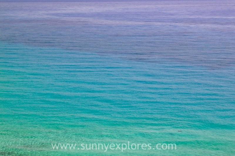 sunny-explores-finances-4